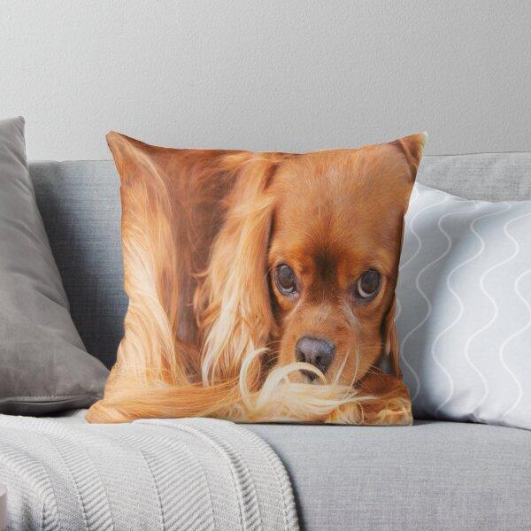 A Special Friend~ Cavalier King Charles Spaniel  Throw Pillow