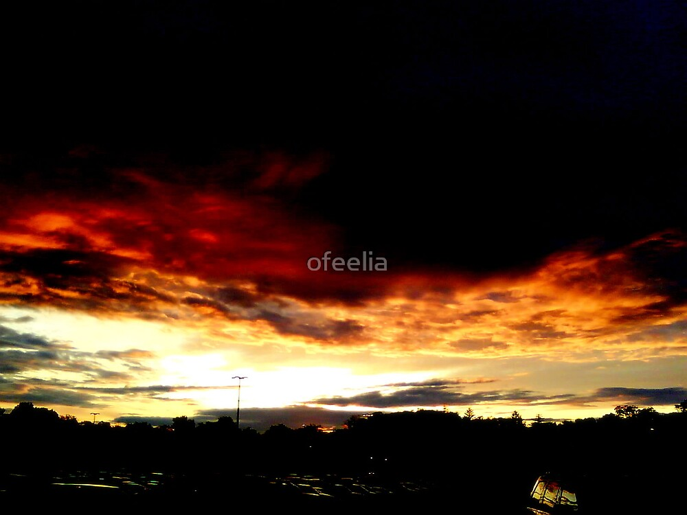Falling  by ofeelia