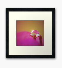 Precious... Framed Print