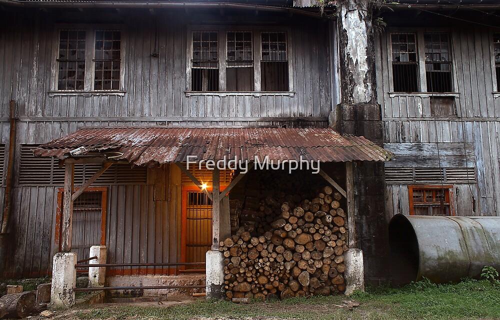 Farm wood by Freddy Murphy