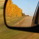 Dual shutter speeds on one autumn evening... by Normcar