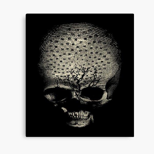 my alchemical death Canvas Print