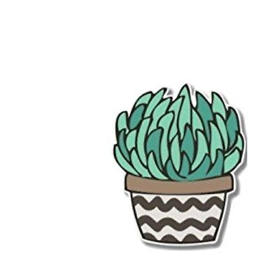 Cactus de katewilliams320