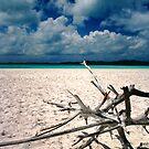 Whitsundays Sun by tracyleephoto