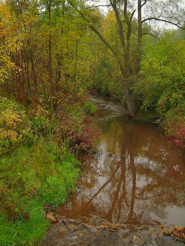 Stream Untouched... peace in our time! by Larry Llewellyn