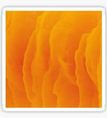 orange pigment  autumn year Sticker