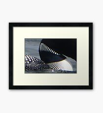 Loon Patterns Framed Print