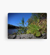 Palisades-Kepler State Park #2 Canvas Print
