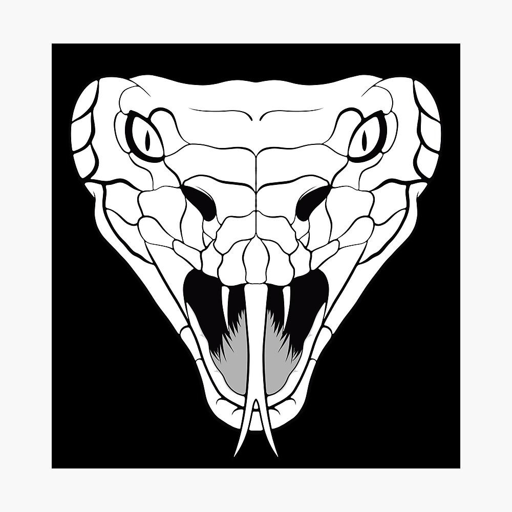 Snake head line-art Photographic Print
