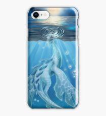 Temperate Seas iPhone Case/Skin