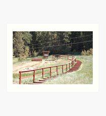 Red wood steps Art Print