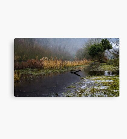 Frozen Shore on the River Wye Canvas Print