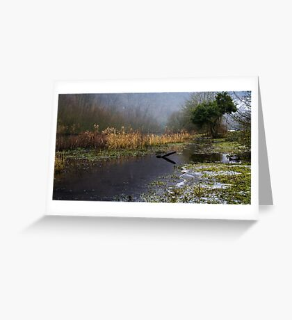 Frozen Shore on the River Wye Greeting Card