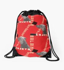 Constructivist Weimaraner Balancing Black Cube Drawstring Bag