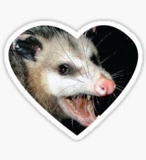 possumcore Sticker