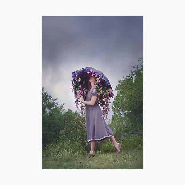 Perennial Parasol Photographic Print