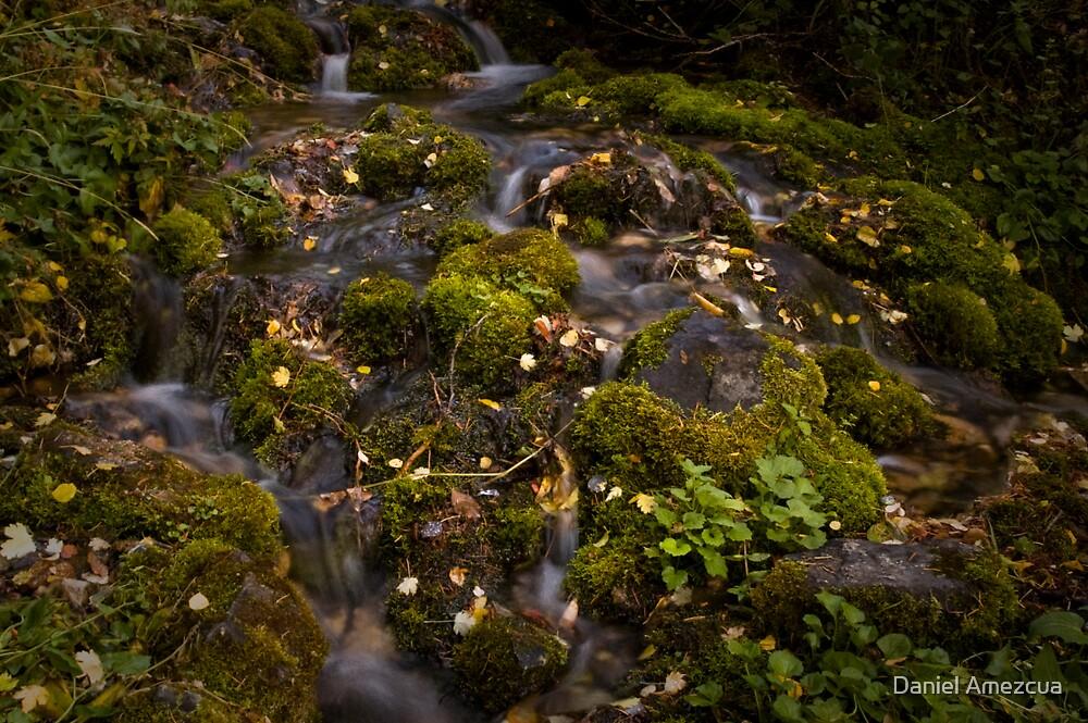Vibrant Little Falls by Daniel Amezcua