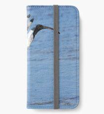 Australian White Ibis (4980) iPhone Wallet