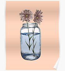 Peach daisies, daisy illustration, flowers Poster