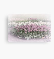 Pastel Tulips Canvas Print