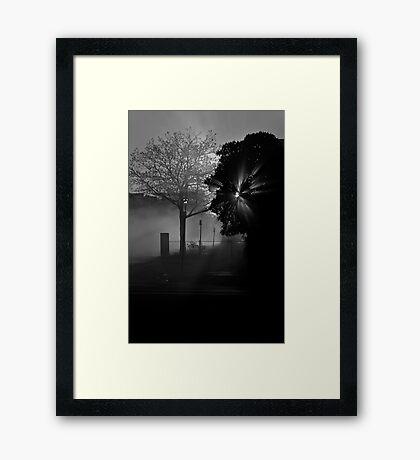 Street Fog Framed Print