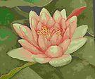 1 Lily by Lynne Kells (earthangel)