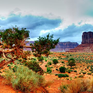 Monument Valley Tree by ShiningBrother