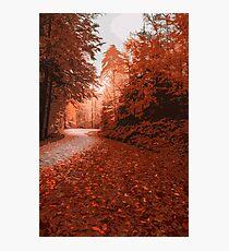 Beautiful Autumnal Day Photographic Print