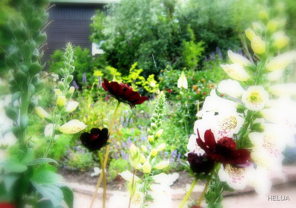 The Enchanted Garden by HELUA