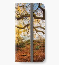 Autumns Golden Colours iPhone Wallet/Case/Skin