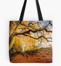 Autumns Golden Colours Tote Bag