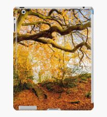 Autumns Golden Colours iPad Case/Skin