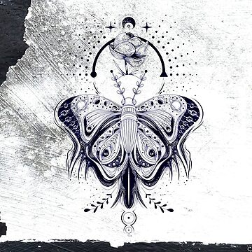 Moths by -Pano