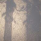 shadows of lace 4 by Tasha Nicholls