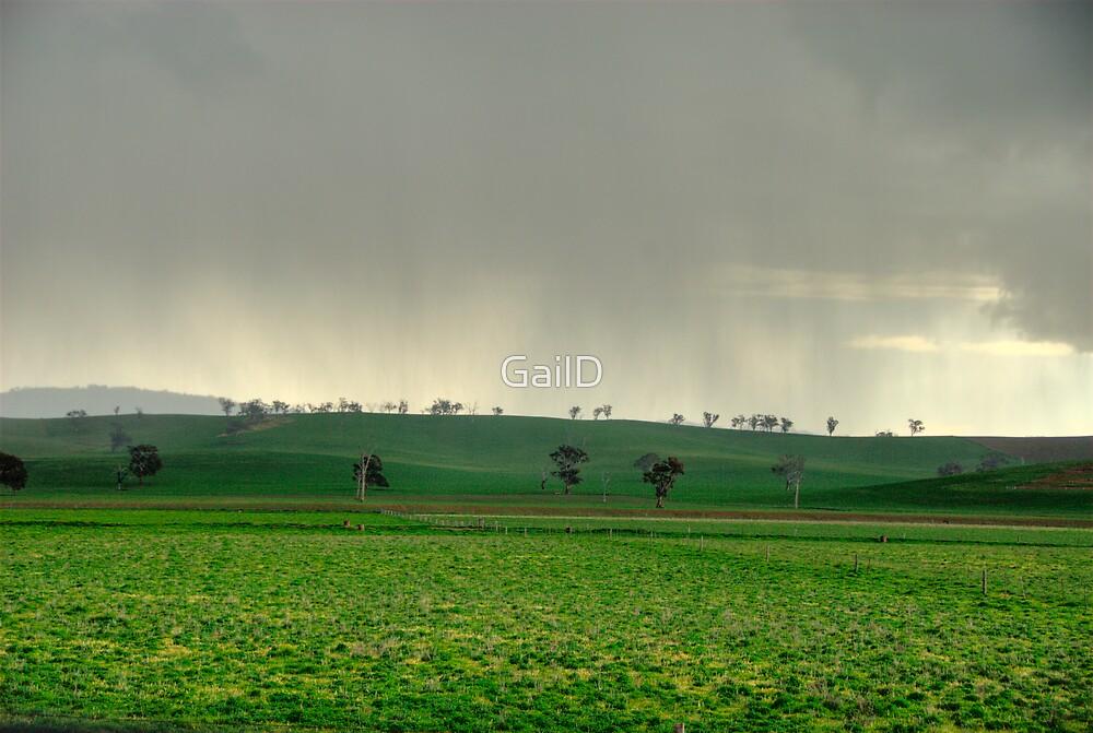 Rain by GailD
