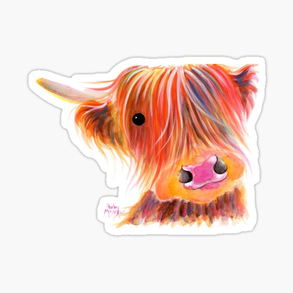 Scottish Highland Cow PRiNT ' SWEET SATSUMA ' by Shirley MacArthur Sticker
