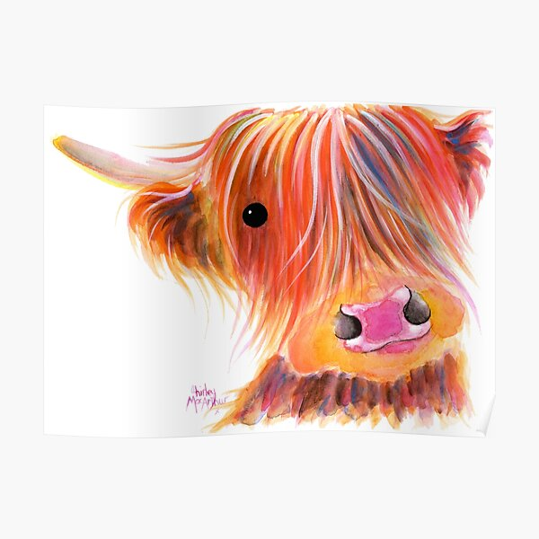 Scottish Highland Cow PRiNT ' SWEET SATSUMA ' by Shirley MacArthur Poster