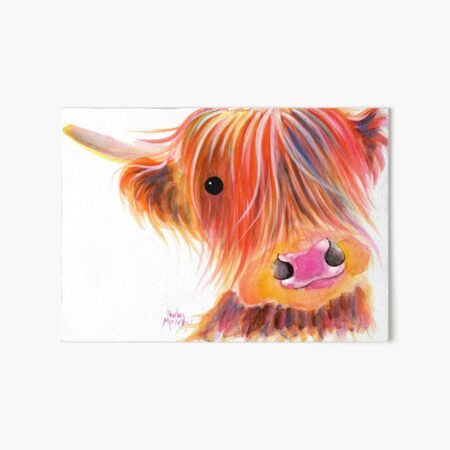 Scottish Highland Cow PRiNT ' SWEET SATSUMA ' by Shirley MacArthur Art Board Print