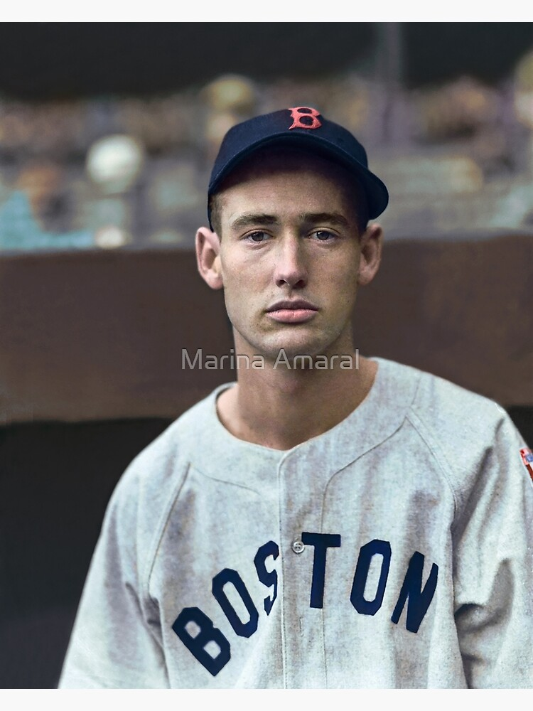 Ted Williams - Colorized Portrait by marinamaral