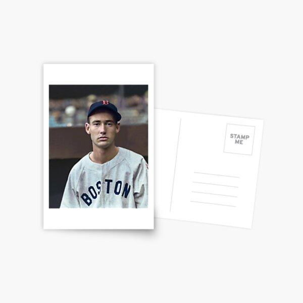 Ted Williams - Colorized Portrait Postcard