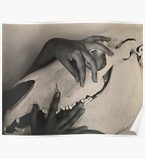Georgia O'Keeffe, Hands and Horse Skull  Poster