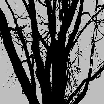 Tree, in black and white line drawing. by robelf
