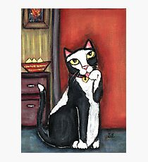 Tux Cat Cleaning Photographic Print