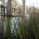 Waccamaw River & Bridge  by Melissa, Sue Ball