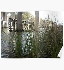 Waccamaw River & Bridge  Poster