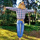 A Good Ole Fashion Scarecrow  by Lanis Rossi