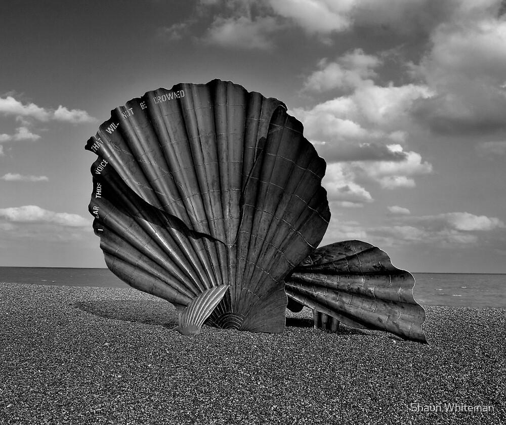Scallop at Aldeburgh by Shaun Whiteman