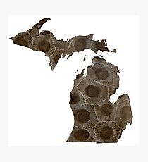 Michigan Petoskey Stone Photographic Print