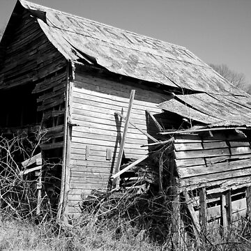 broke down barn by dannielle