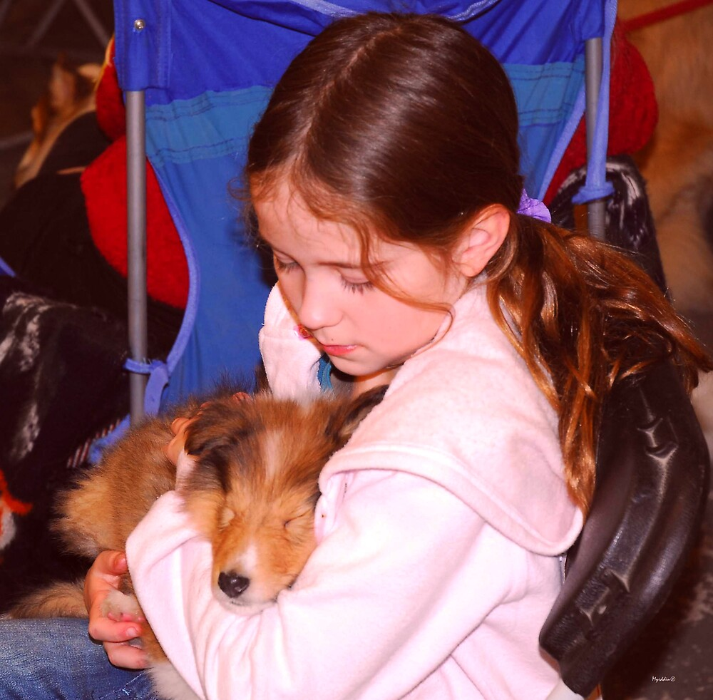 A Day at the Puppy Match by Myrddin